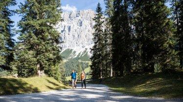 Wandelpad in het Gaistal, © Tirol Werbung/Dominik Gigler