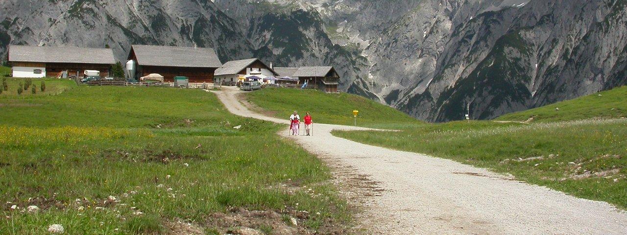 Walderalm im Karwendel, © Irene Prugger