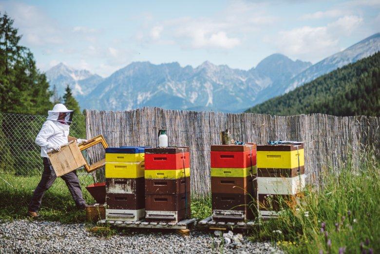 Reinhard Hetzenauer bij zijn bijenkasten op het Axamer Lizum vlak voor het oogsten van de honing. Op de achtergrond zie je het Karwendelgebergte.