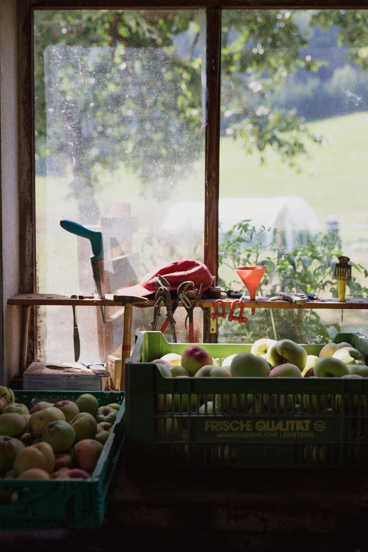 Op 450 bomen groeit fruit voor de twee hotels van de Maurachers familie.