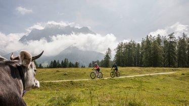 Met de mountainbike naar de Tuftalm, © Zugspitz Arena Bayern-Tirol/Joe Hoelzl