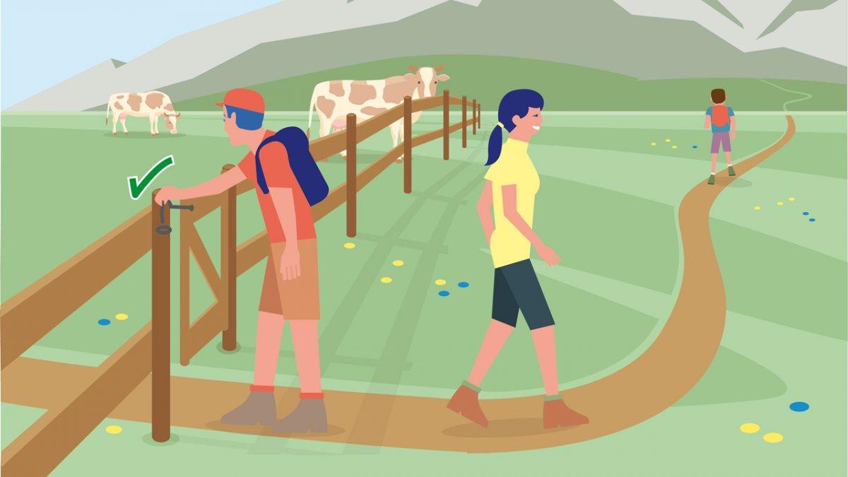Gedragsregel nr. 9, © Landwirtschaftskammer Tirol