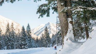 Winterwandeling Falzthurnalm, © ÖW/Robert Maybach