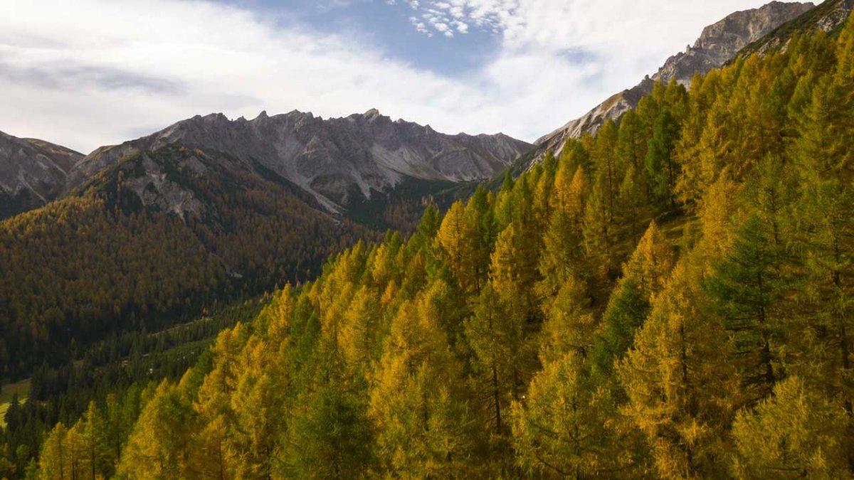 Eulenwiesen in de herfst, © Tirol Werbung/Mario Webhofer