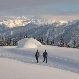 Sneeuwschoenwandelen & Winterwandelen, © Tirol Werbung / Katharina Poblotzki