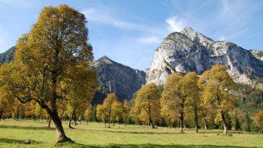 Ahornboden im Naturpark Karwendel, © Silberregion Karwendel