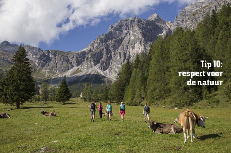 Tip 10: respect voor de natuur