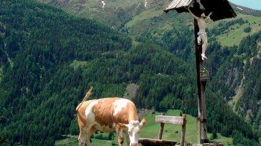 Uitzichtpunt met kruis, © Tirol Werbung