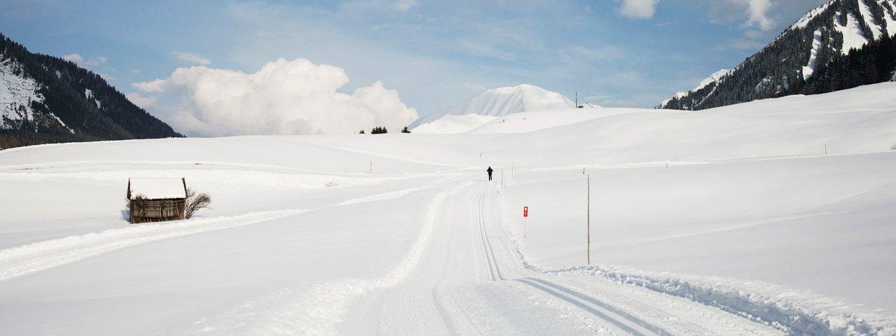 Loipe in Berwang, © Tirol Werbung/Verena Kathrein