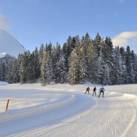 Langlaufen in Seefeld, © Tirol Werbung/Josef Mallaun