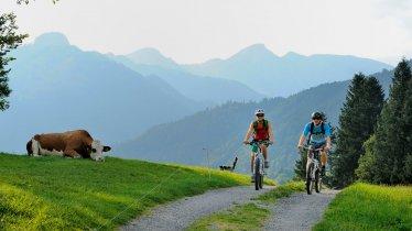 Mountainbiken Kaiserwinkl, © Tirol Werbung/Alexander Ziegler