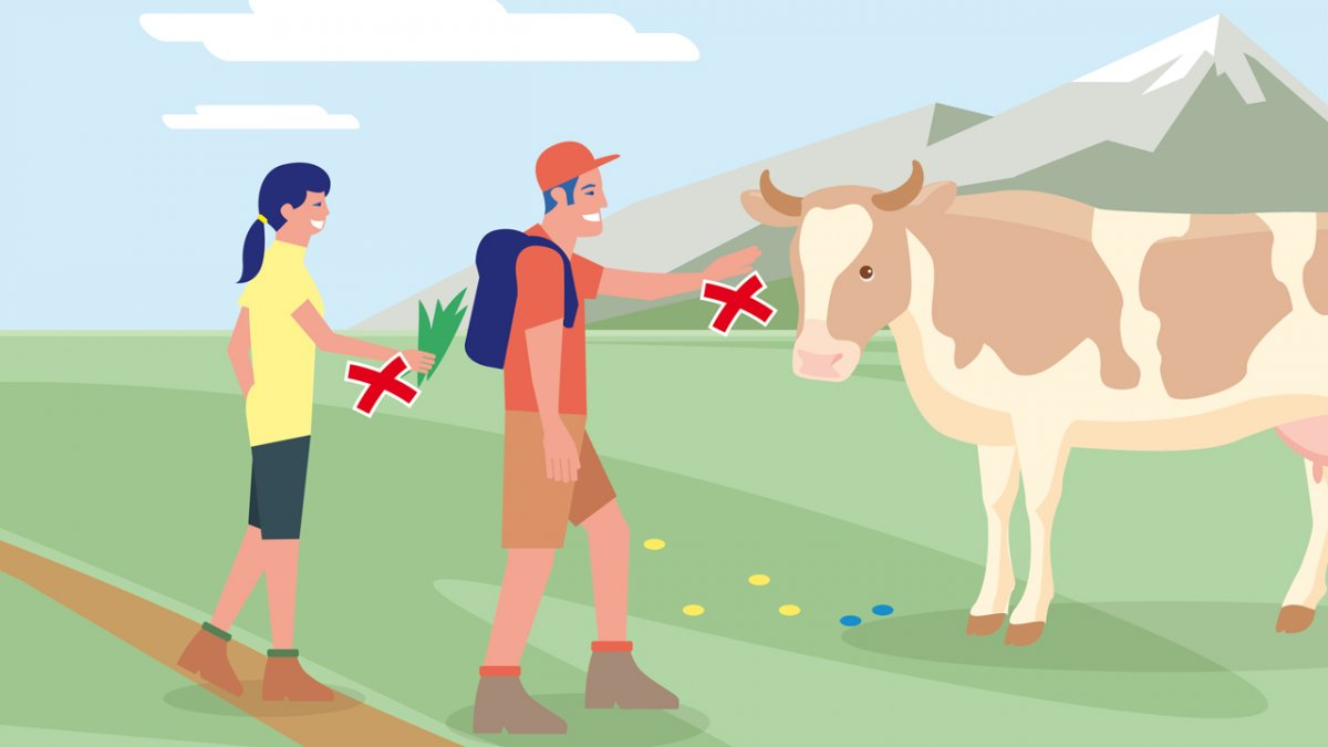 Gedragsregel nr. 1, © Landwirtschaftskammer Tirol