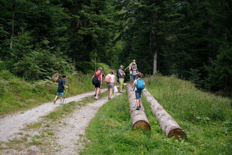 Kinderen geven het tempo aan bij het wandelen.
