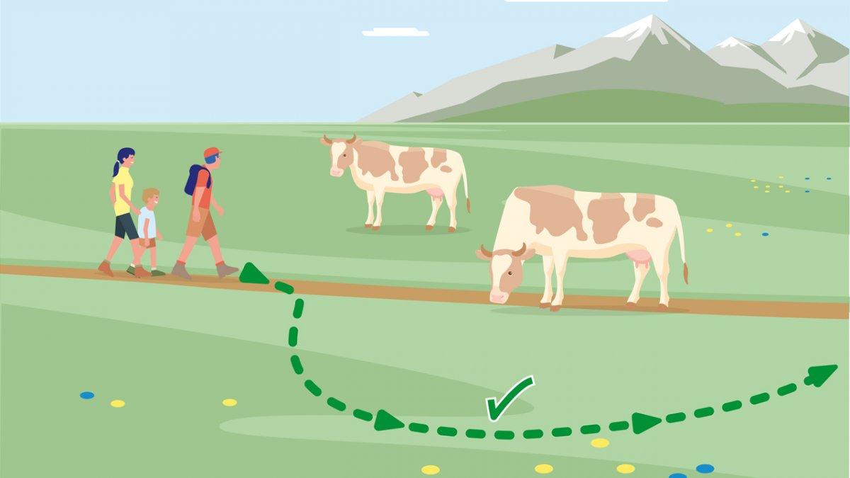 Gedragsregel nr. 6, © Landwirtschaftskammer Tirol