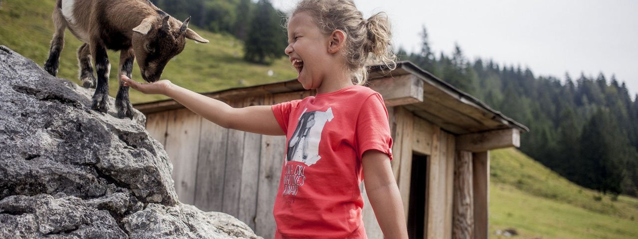 Gezinsvakantie aan de Wilder Kaiser, © Tirol Werbung/Hans Herbig
