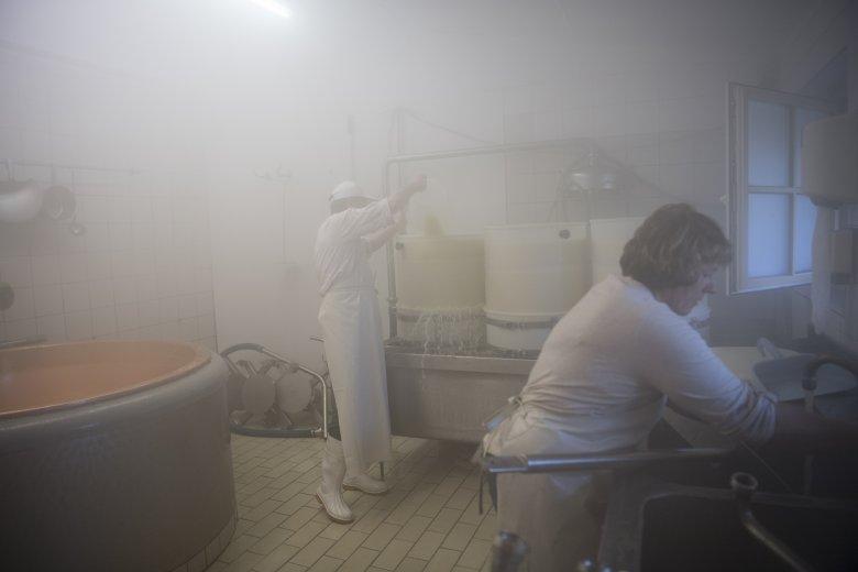 In de moderne kaasmakerij heersen strengehygiënische regels.