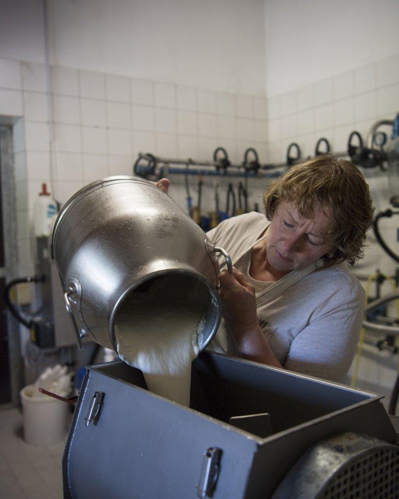45.000 liter melk wordt elke zomer verwerkt.