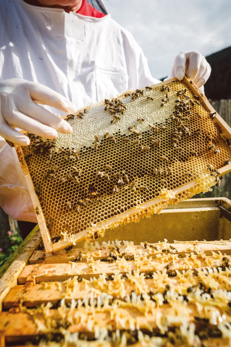 Dit is één bijenraat. Is een derde van de cellen verzegeld, dan is de honing rijp.