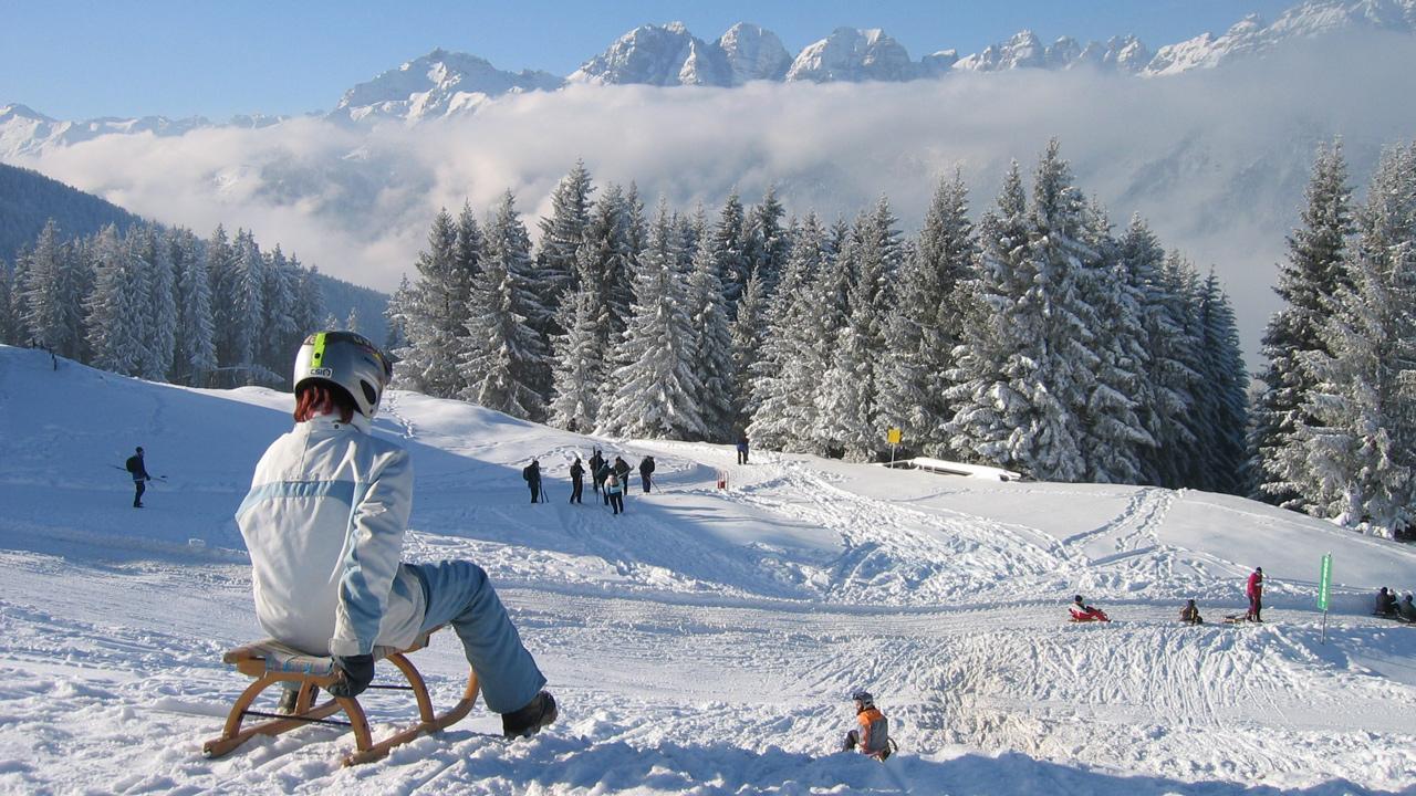 Rodelen In Tirol De Alpen Tirol In Ostenrijk
